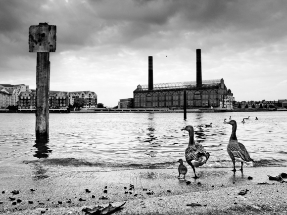 Old Swan Wharf, Battersea - click to enlarge