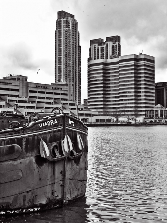 Wood Wharf - click to enlarge