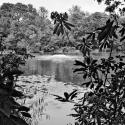 Crystal Palace Park Lake - click to enlarge