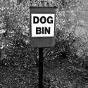 Dog Bin, Island Gardens, Isle of Dogs - click to enlarge