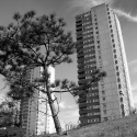 Tower blocks, Green Dragon Lane, Brentford