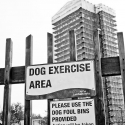 Dog Exercise Area, Lambeth Walk Open Space