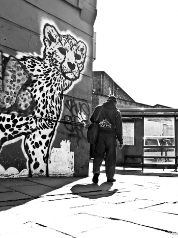 Cheetah graffiti, Camberwell Passage