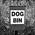 Dog Bin, Island Gardens